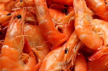 Gambes, marisc saludable